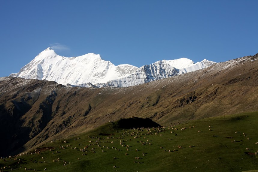 Mount Trishul from Bedni Bugiyal